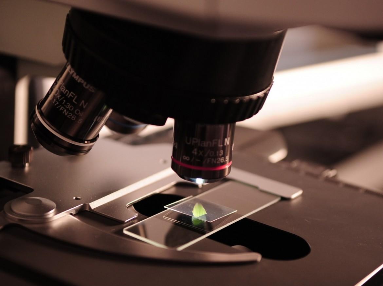 współpraca przedsiębiorstw, mikroskop, dotacje na usługi badawcze
